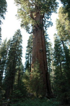 Usa_West_04_Roby_0156